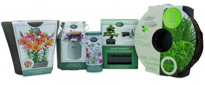 G Plants Growing Gift Sets