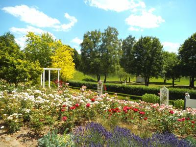 Im Rosengarten von Bad Mergentheim